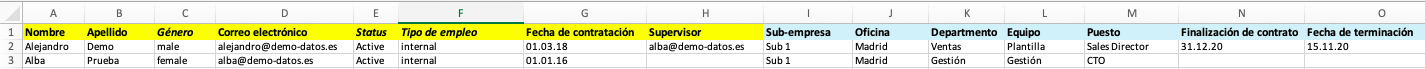 employee-import-template_es.png
